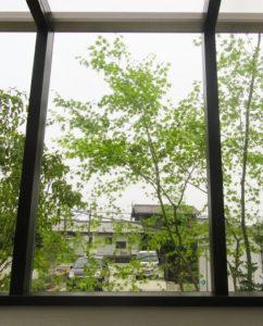 光触媒外壁塗装の窓