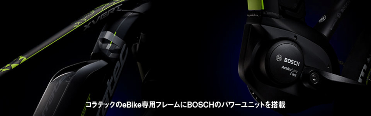 e-bikeのフレーム